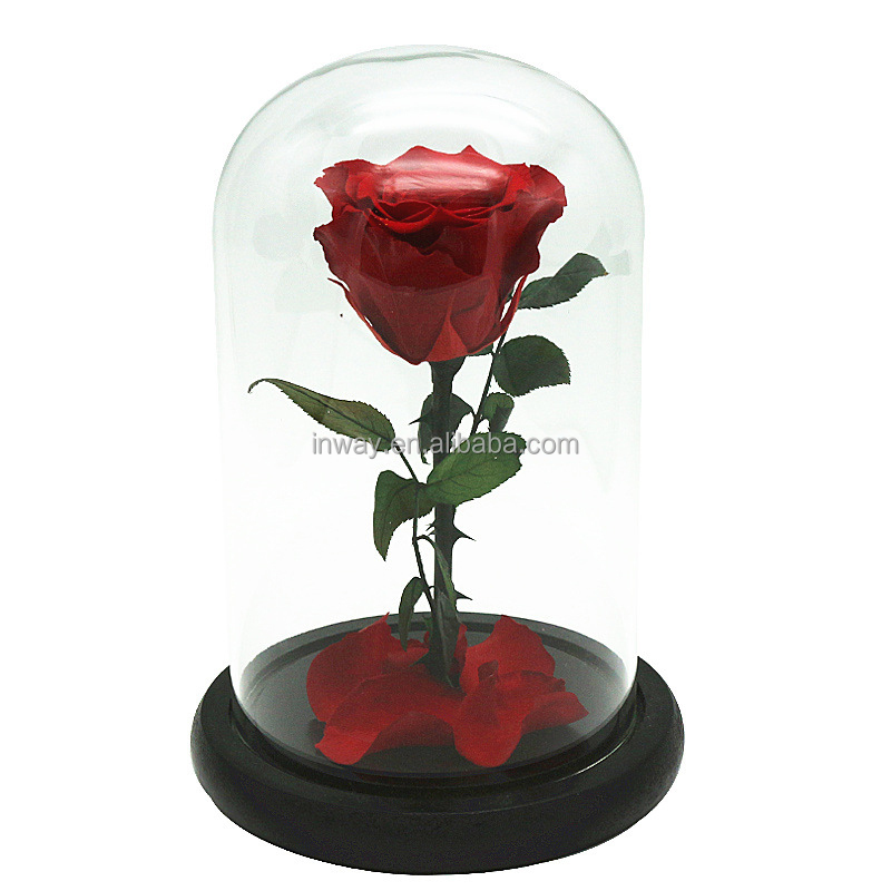 top sell long lasting flower in glass preserved roses in a dome