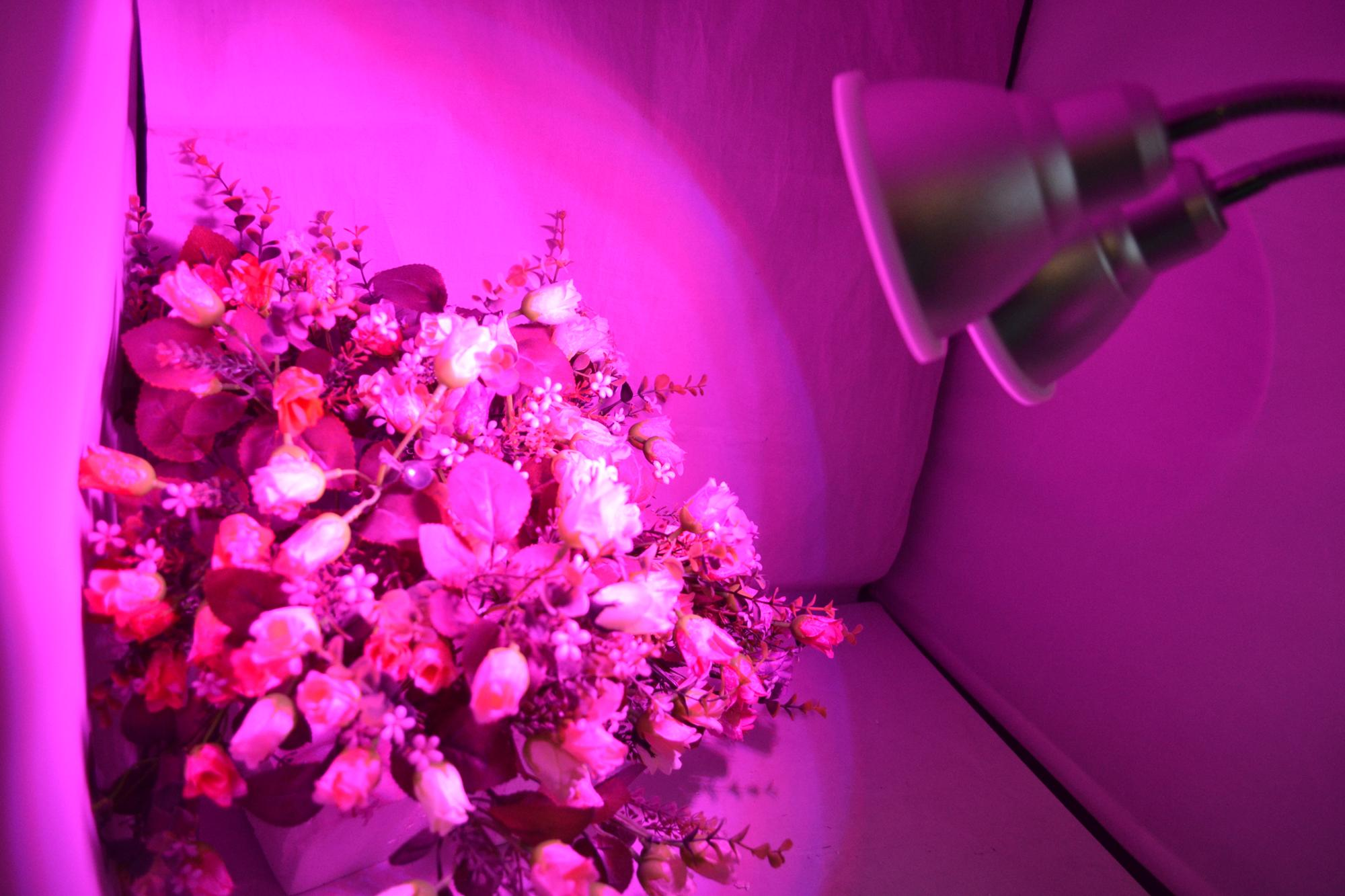 Dual Head 24w Timing Cilp LED Grow Light for Indoor and OuTdoor Plant Hydroponic LED Plant Light Grow