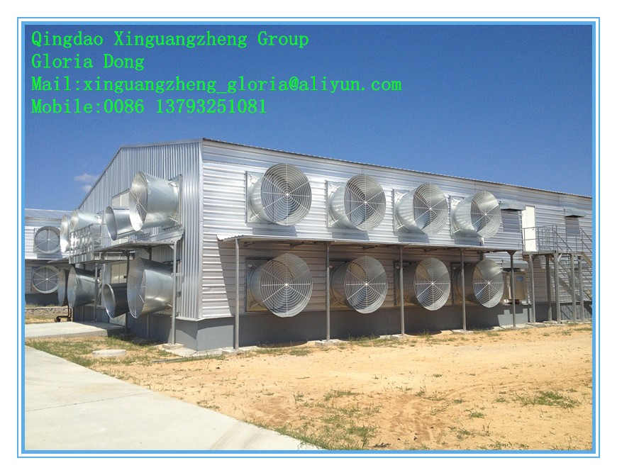 automatic poultry control farm for broiler and layer