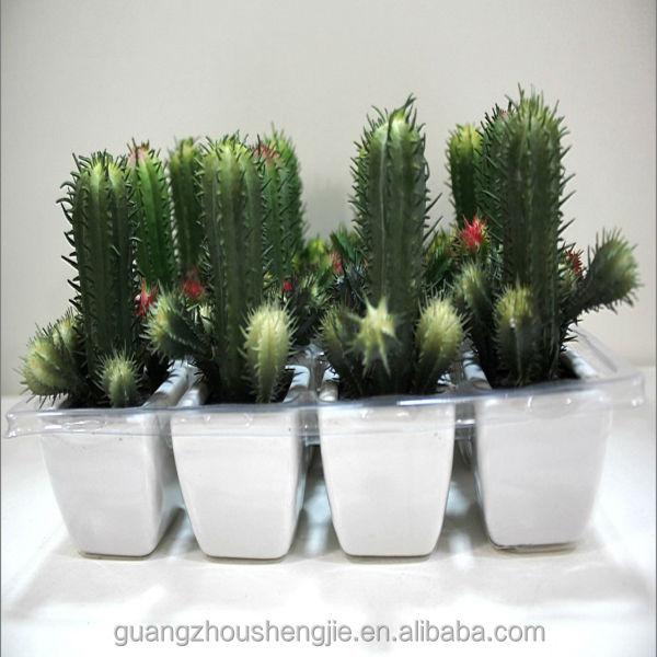 q081115 garden decoration artificial cactus and succulent plants mini bonsai buy mini bonsai. Black Bedroom Furniture Sets. Home Design Ideas