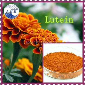 Resisting arteriosclerosis and Preventing cardiopathy Marigold Extract Powder
