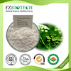 Dahurian angelica root Herbal Plant Powder Angelica Root Powder