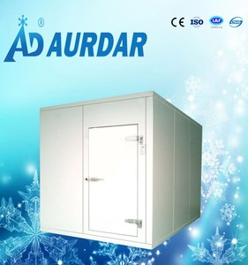 equipment from china for the small business cold room for sale very valuable and competitive