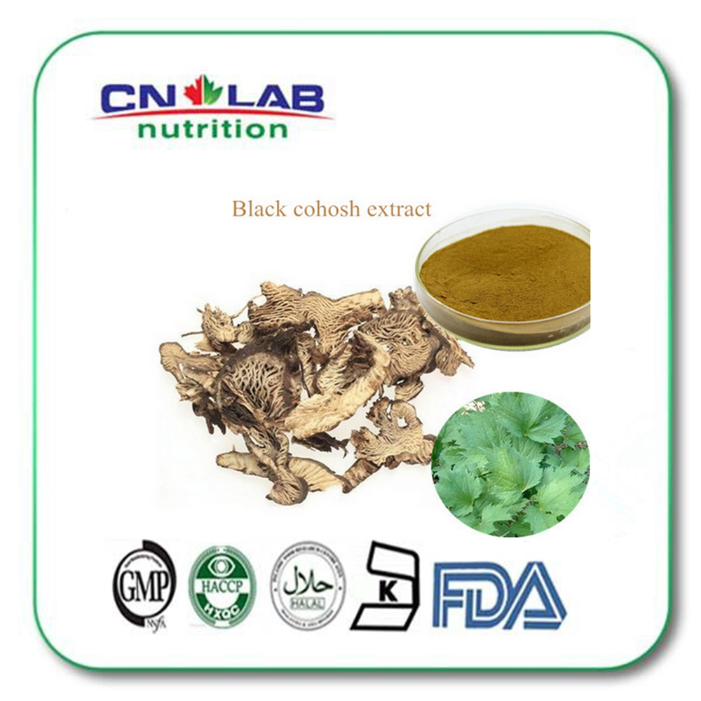 Black Cohosh Extract use Antibacteria anticancer /cimicifuga racemosa p.e.