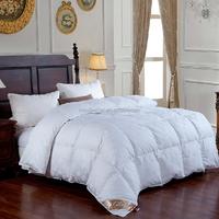 Twin / Twin XL Size Down-Alternative 300 TC Comforter