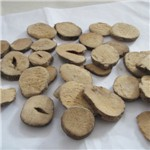 huang lian high quality wholesale goldthread root coptis root rhizoma coptidis