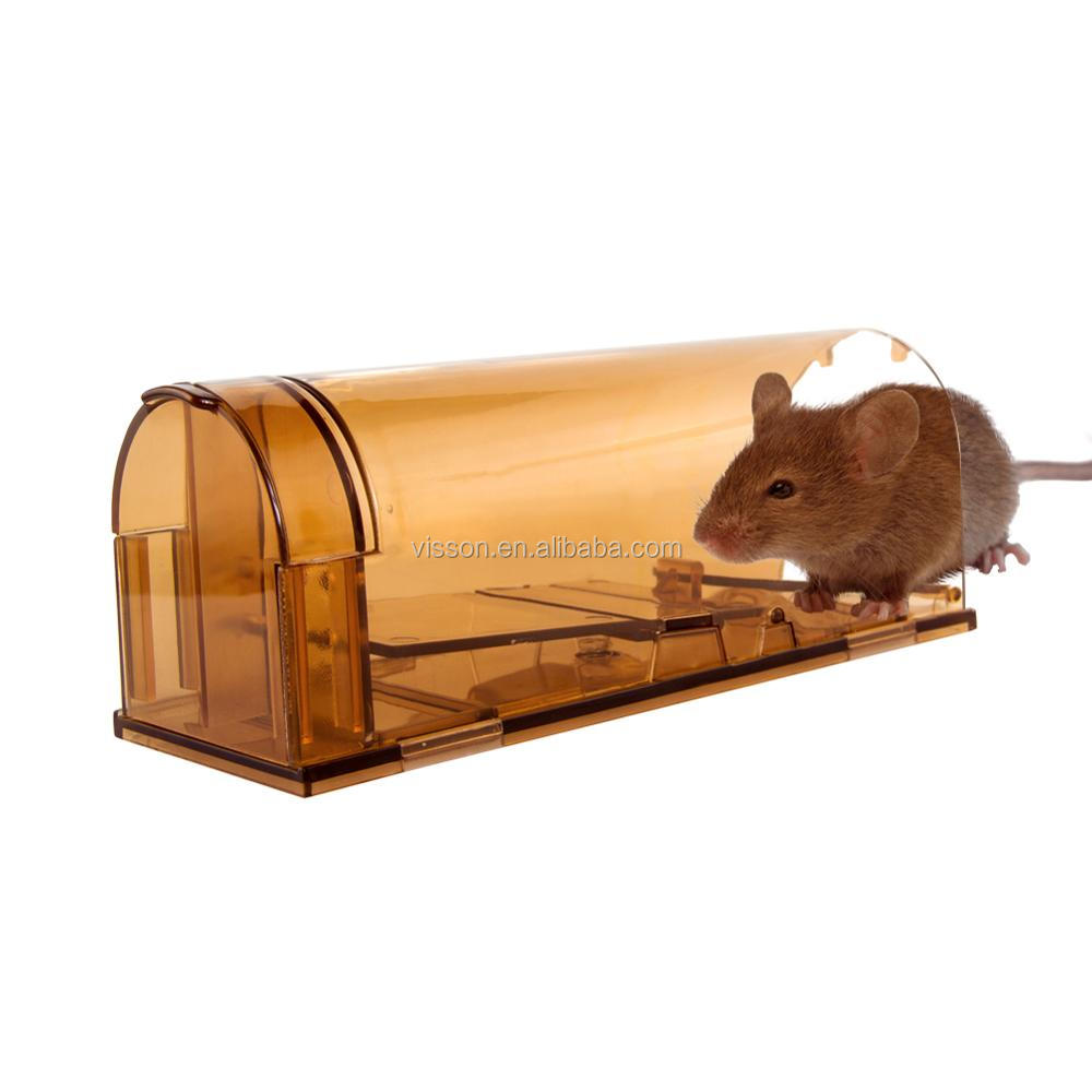 tuer une souris bitwus grambags efficace souris et le poison rat souris tuer appts rat with. Black Bedroom Furniture Sets. Home Design Ideas