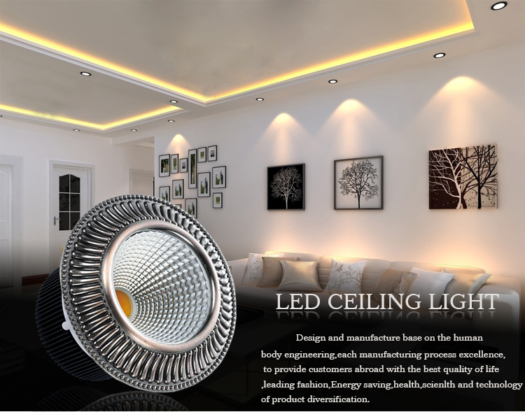 Leimove energy-saving led down light custom made for customization-2