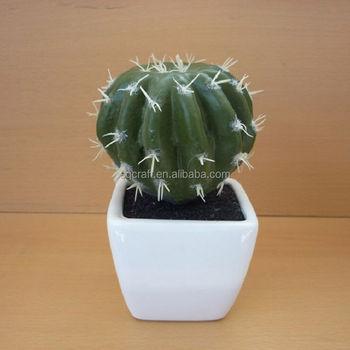 Vivarium Terrarium Artificial Cactus Succulent Plant In Pot Buy