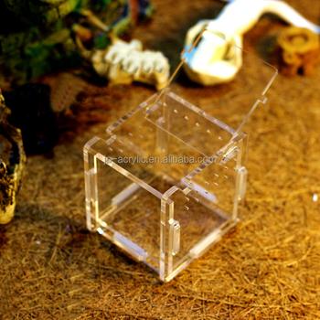Acrylic Small Pet Cage Mini Animal Pet Insects Reptiles Terrarium