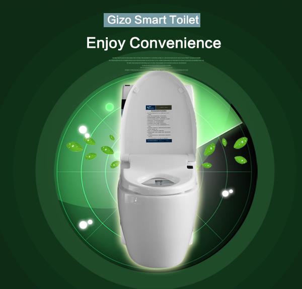Toto Toilet Installation