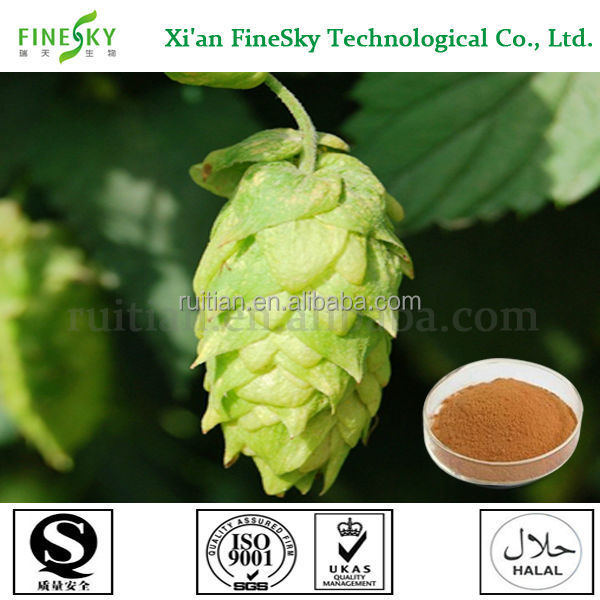 China Sourced Hops flower extract powder