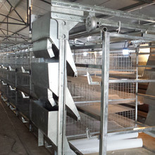poultry battery cages for baby layer chicken