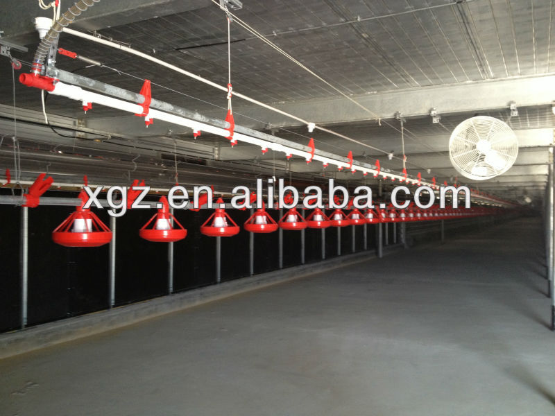 modern design chicken shed for poultry farms with automatic equipments