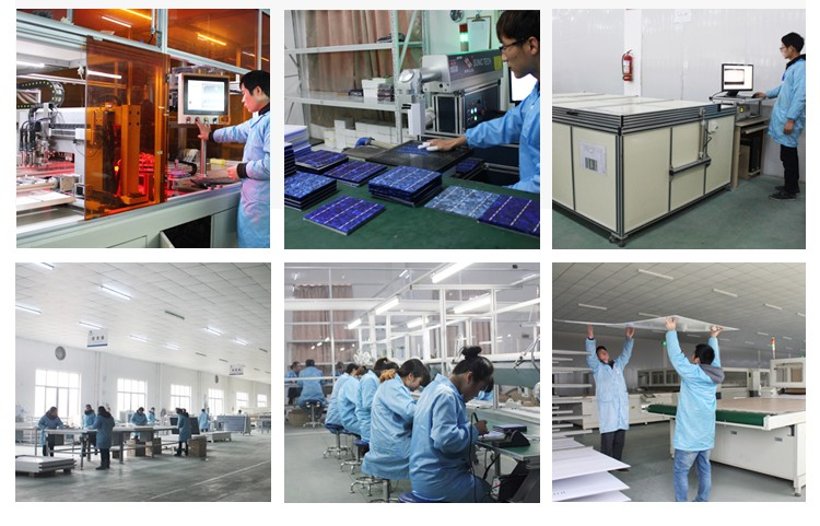 High Quality High Efficiency 25 Years Solar Panels Wholesale China 300W Solar Panel
