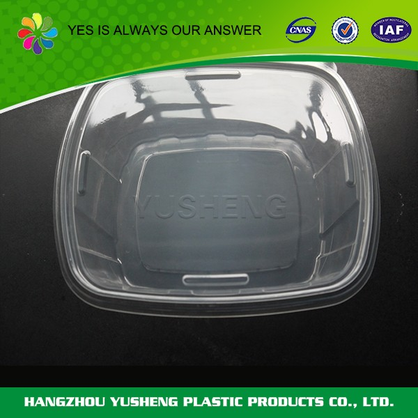 China manufacture professional clear plastic food disposable box