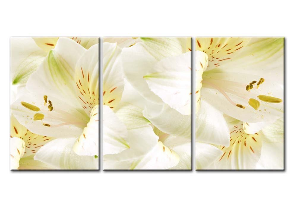 Buy Wall26 - Canvas Prints Wall Art - Easter Lily with a Large ...