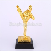 high quality Taekwondo trophy cup the Student Award