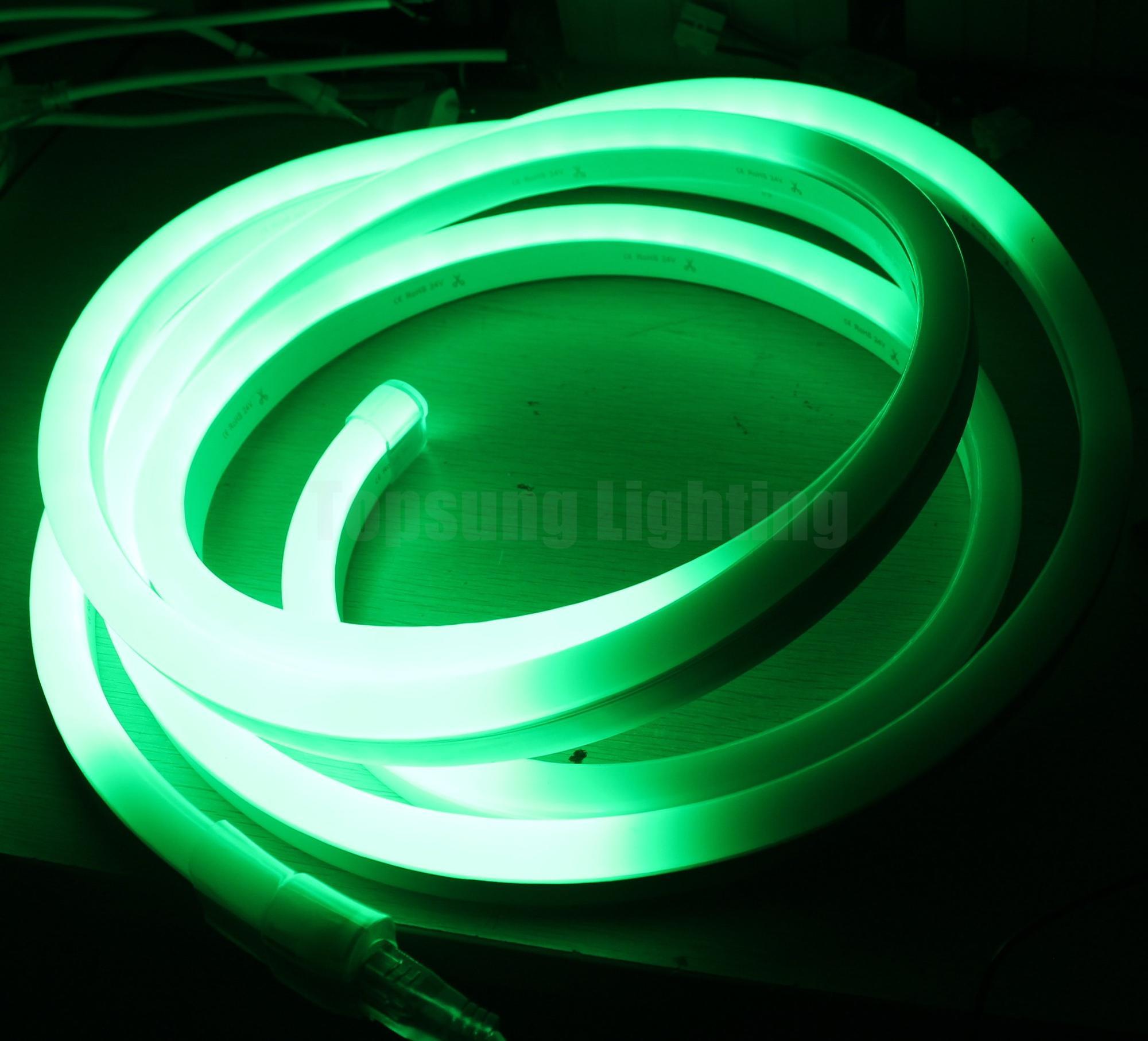 Pixel LED Neon Flex (5).JPG