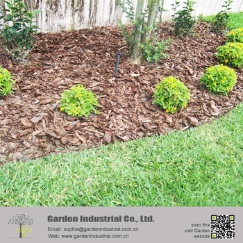 Pine Bark Mulch Eliminate Blowing Sand Problems - Buy Pine