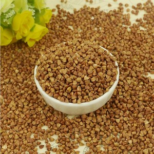 Wholesale hot sale organic dried roasted buckwheat price
