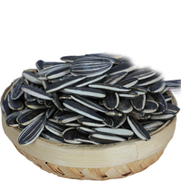 Chinese market price specification black sunflower seeds in shell