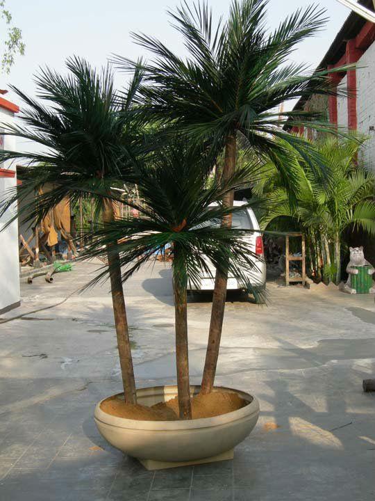 for Tipos de palmeras de exterior