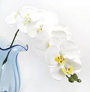 Calcifer 12 Heads Artificial Real Touch Latex Phalaenopsis Orchid Stem Bouquets Artificial Flowers for Wedding Party Home Garden Decor (10 Pcs, White)