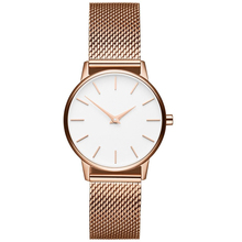 Wholesale Interchangeable steel mesh band Women's watch