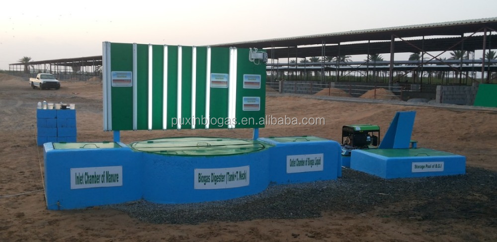 home biodigester biogas plant with biogas engine for generating
