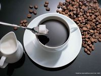 Roasted Processing Type and Coffee Bean Type Arabica Coffee Beans Wholesale