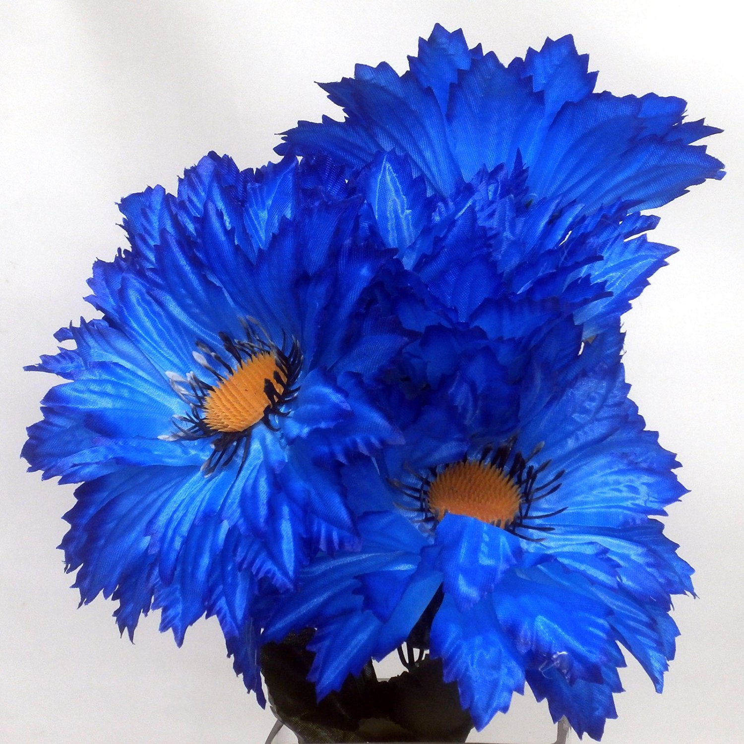 Cheap Dahlia Blue Find Dahlia Blue Deals On Line At Alibaba