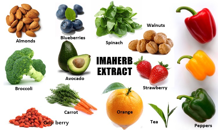 GMP factory supply herb organic gac fruit powder extract natural 100% viet nam