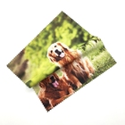 Digital Print Microfiber Eyeglass Lens Cloth Cloth