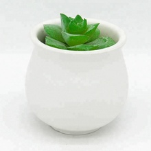 KW756Y <span class=keywords><strong>Mini</strong></span> Succulent Keramische Pot