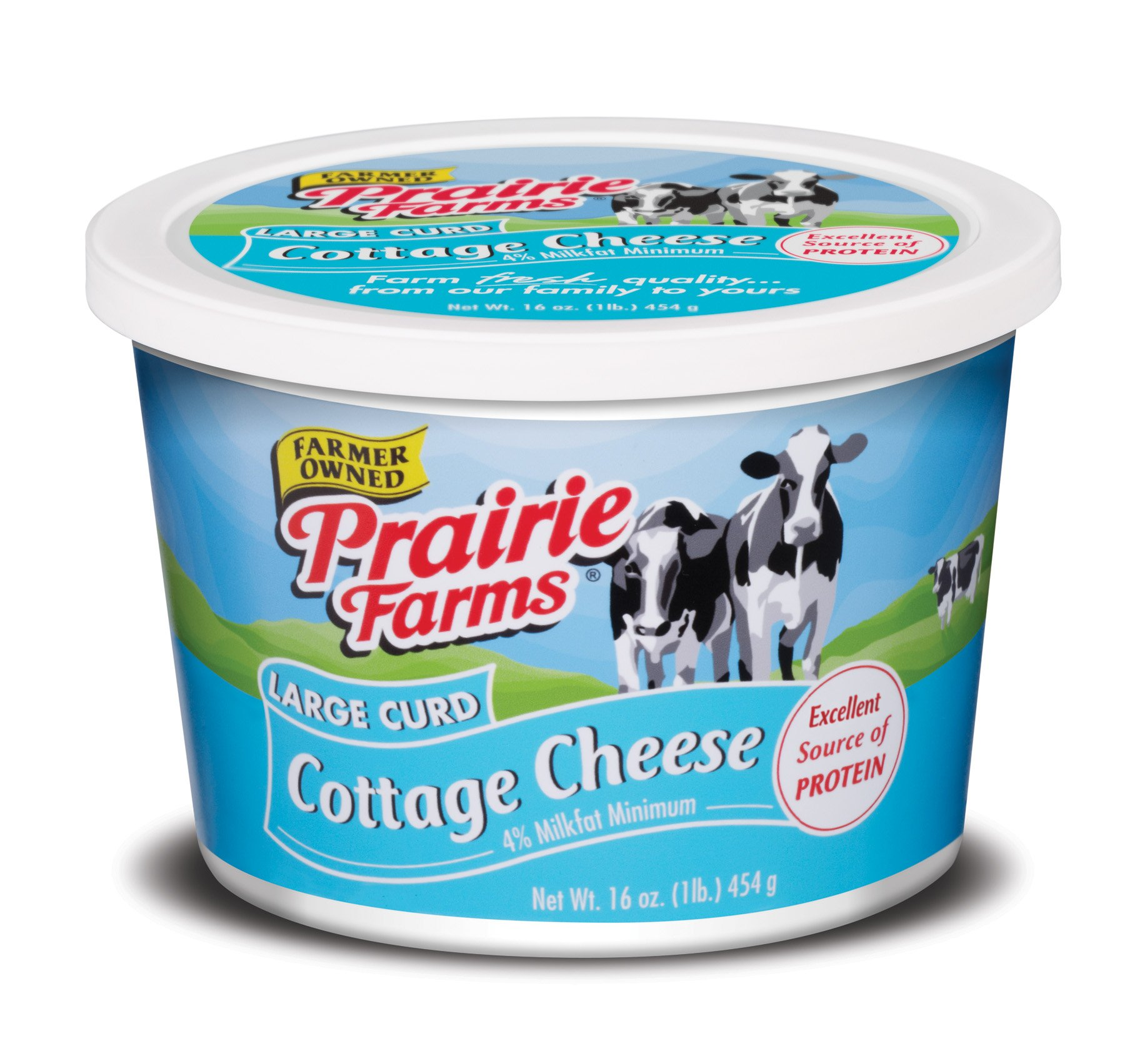 Prairie Farms Dairy 1 LB Cottage Cheese Large Curd, 16 oz