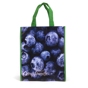 Low Price PP Non Woven Fabric Shopping Bag