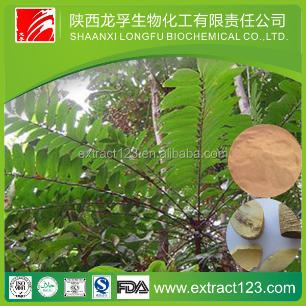 factory supply Tongkat ali extract powder