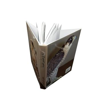 Best you can get custom book printing services online