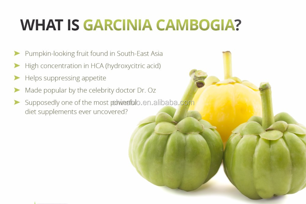 GMP Factory Supply Plant Extract Pure and Wholesale High Quality Garcinia Cambogia Extract Powder Hydroxycitric Acid
