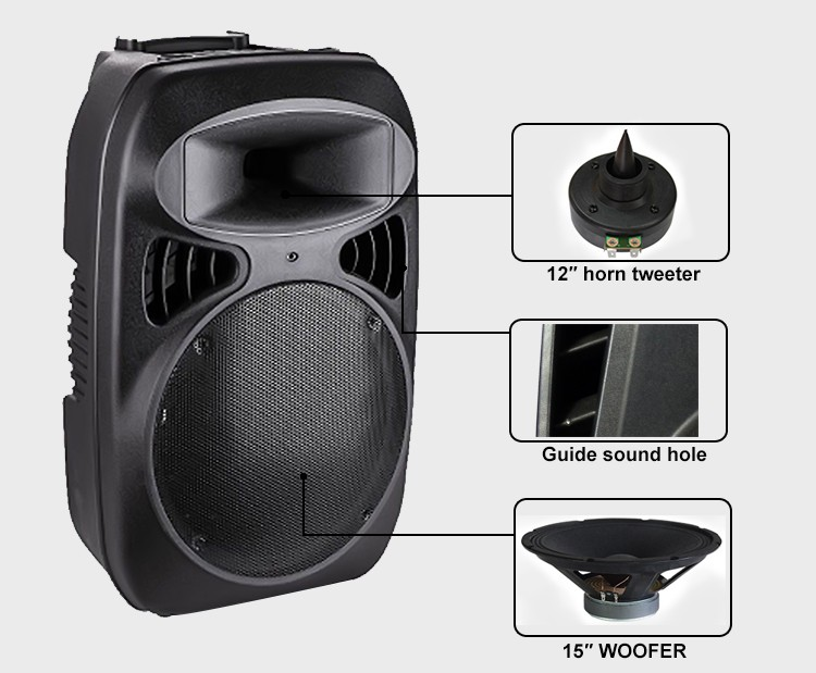 15 Inch Rechargeable Portable Stage Loudspeaker Professional Audio ...