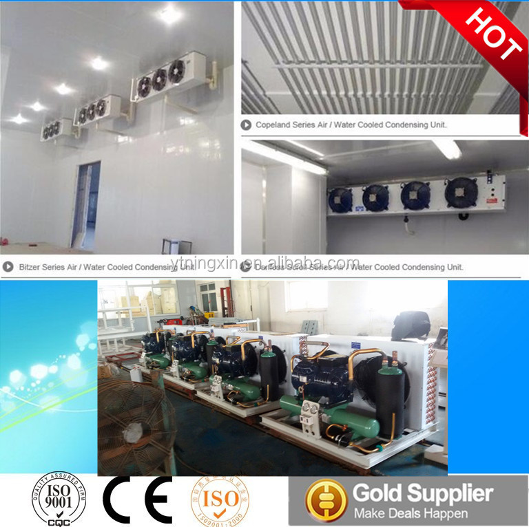 Cold Storage For Onion Cold Storage For Onion Suppliers and Manufacturers at Alibaba.com & Cold Storage For Onion Cold Storage For Onion Suppliers and ...