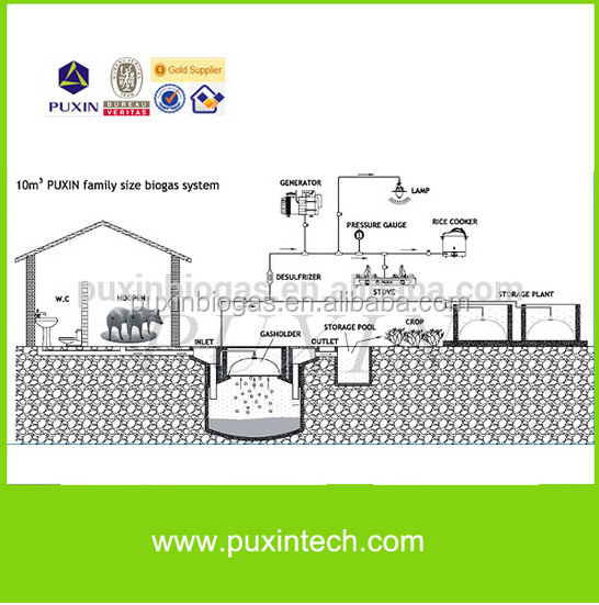 PUXIN Small Biogas Plant Organic Waste To Power Biogas Plant Part 46