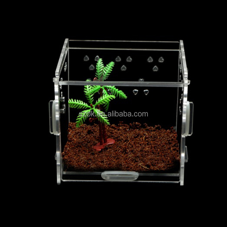 Custom acrylic animal display case / countertop plexiglass pet cage/ acrylic reptile display case