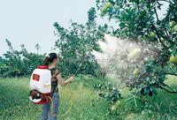 Korea tech high pressure sprayer hose pipe/Pesticide Power Sprayer Machine for Agriculture