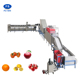 Orange/Lemon Cleaning and Grading Machine|Pear/Peach Washer and Waxer Machine|Apple Washing and Waxing Machine