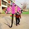 Hot sell Chinese professional product sport stunt kite