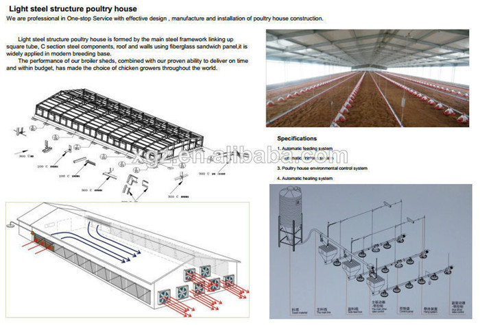Auto-Control Equipments Steel Structure Poultry Farming House Design Manufacturer