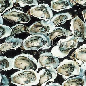 mu li ke crude medicine herbs sale oyster shells