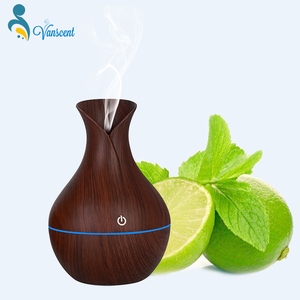 New Arrival USB Essential Oil Diffuser Humidifier Scent Purifier Spa Aroma Diffuser